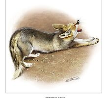 RUEPPELL'S FOX 4 by DilettantO