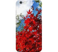 Red leaves and blue sky iPhone Case/Skin
