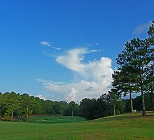 Number One Alpine Bay Golf Course Alpine, Alabama by Mike Pesseackey (crimsontideguy)