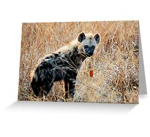 THE SPOTTED HYAENA - Powerful and treacherous... Greeting Card