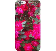 Reflection of Red Roses iPhone Case/Skin