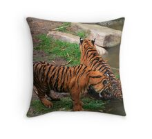 Ohhh Nooo! I just wanted to have a drink!!!! Throw Pillow