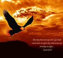 Isaiah 40:31 by loramae