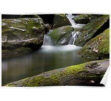 Stoney Fork  (Mineral creek) Poster