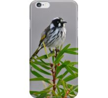 On top of the tree iPhone Case/Skin