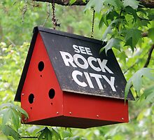 See Rock City  by searchlight