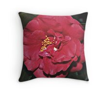 A VISION IN RED Throw Pillow