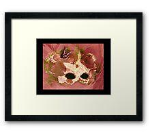 Rosey Facade Framed Print