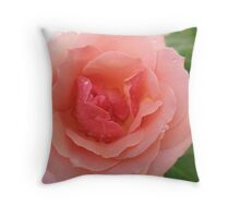Sweetness and Light Rose Throw Pillow