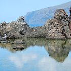 Los Gigantes Rockpool - Tenerife by evilcat