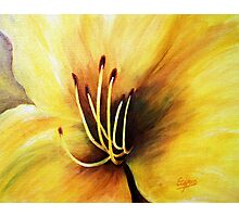 The Lily's heart , Acrylic painting Photographic Print