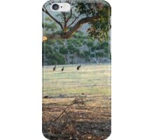 The Field - Kangaroo Island  iPhone Case/Skin