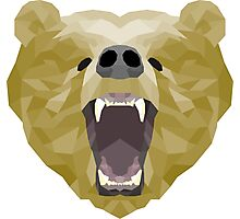 Grizzly bear polygon Photographic Print