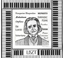 Liszt by Paul Helm