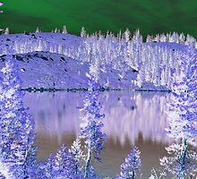 Feeley Lake, abstract by Lenny La Rue, IPA