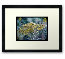 Autumn Hues TTV Framed Print