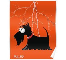 Schnauzer in a thunder storm Poster