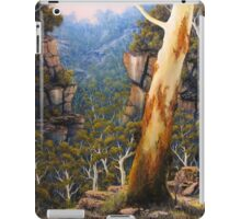 Valley Morning Dew iPad Case/Skin