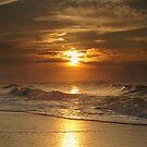 Edisto Sunrise I by David Allen