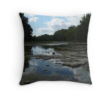 The River in Summer Throw Pillow