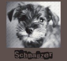 Schnauzer by Matthew Osier
