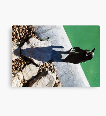 Penguin Shadow Canvas Print