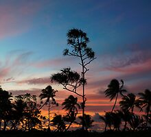 Sunset by Skye Hohmann