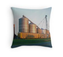sunrise by the railyard Throw Pillow