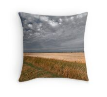 Fall On The Prairies Throw Pillow