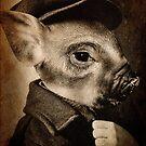 Mr Pigglet by Lee Lee