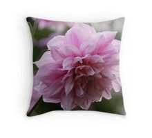Pink Chrysanthemum Throw Pillow