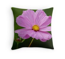 Pink Cosmos With a Dash of Yellow Throw Pillow