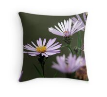 Lavender Asters Throw Pillow
