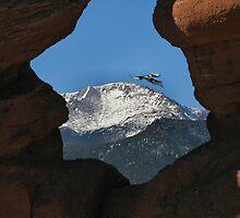 Siamese Twins Rock Formation with Bird Flying  by Bob Spath