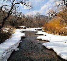 Spring Thaw on Clear Creek, near Boulder,CO by Bob Spath