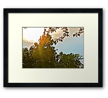 shining through. Framed Print