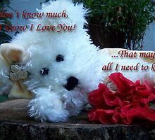 I Know I Love You by Terri Chandler