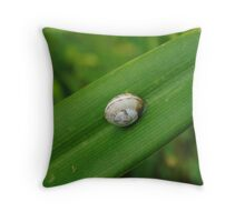 Little Snail Throw Pillow
