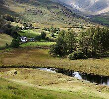 Little Langdale Farm by SteveMG
