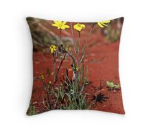 Senecio gregorii Mt Connor lookout 19980808 0017 Throw Pillow