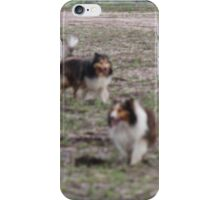 Sheltie love iPhone Case/Skin