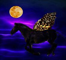 Pegasus by laureenr