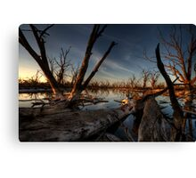 Red Gum Grave Yard Canvas Print