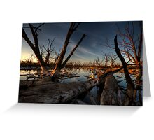 Red Gum Grave Yard Greeting Card