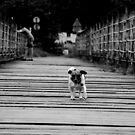 Crossing by Guy Picton