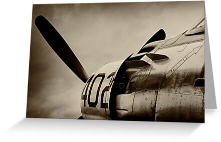 Skyraider by Lea Valley Photographic