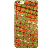 Orange and Green iPhone Case/Skin