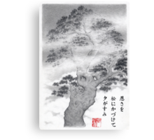 Pine in the mist haiku Canvas Print