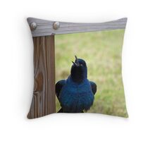 Singing Male Grackle Throw Pillow