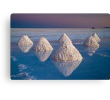 Salt mounds Canvas Print
